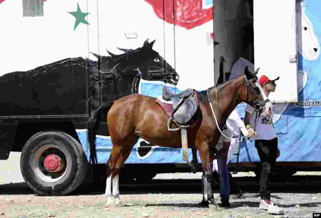 A member of the Police Sports Club stands by a horse during a parade, held in conjunction with an Arabian horse festival to celebrate Syrian President Bashar al-Assad's re-election in Damascus, Syria.