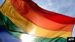 Hàng ngàn người đồng tính tham gia cuộc diễn hành mang tên Tự Hào Châu Âu cầm cờ cầu vồng, và mang biểu ngữ đòi Ba Lan xem hôn nhân đồng tính là hợp pháp