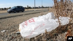 FILE - A plastic bag litters the roadside.