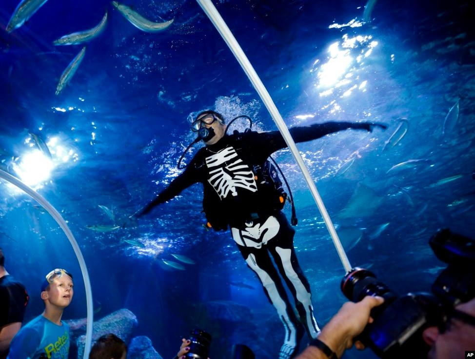 Est100 Some Photos Diver Skeleton