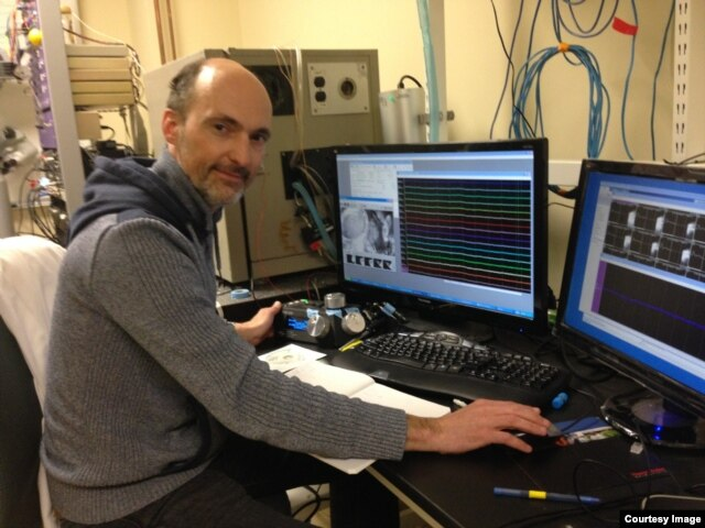 University of Maryland Neuroscientist Patrick Kanold records the neuron activity in the auditory cortex of an adult mouse, the part of the brain that processes hearing. (Photo courtesy Patrick Kanold)