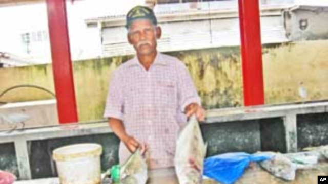 Seychelles Official Warns of Threats to Country's Tuna Industry