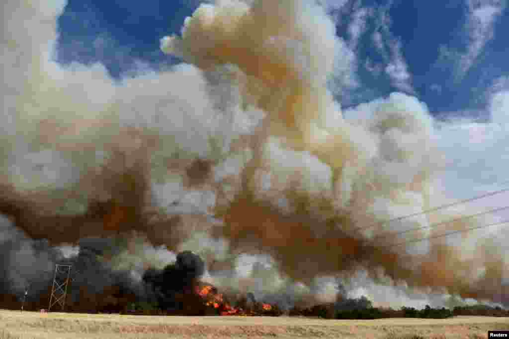 The Rhea fire burns through a grove of red cedar trees near Seiling, Oklahoma, April 17, 2018.