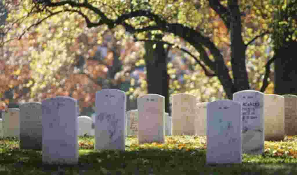Conmemoración del Día de los Veteranos en el Cementerio Nacional de Arlington, Virginia.