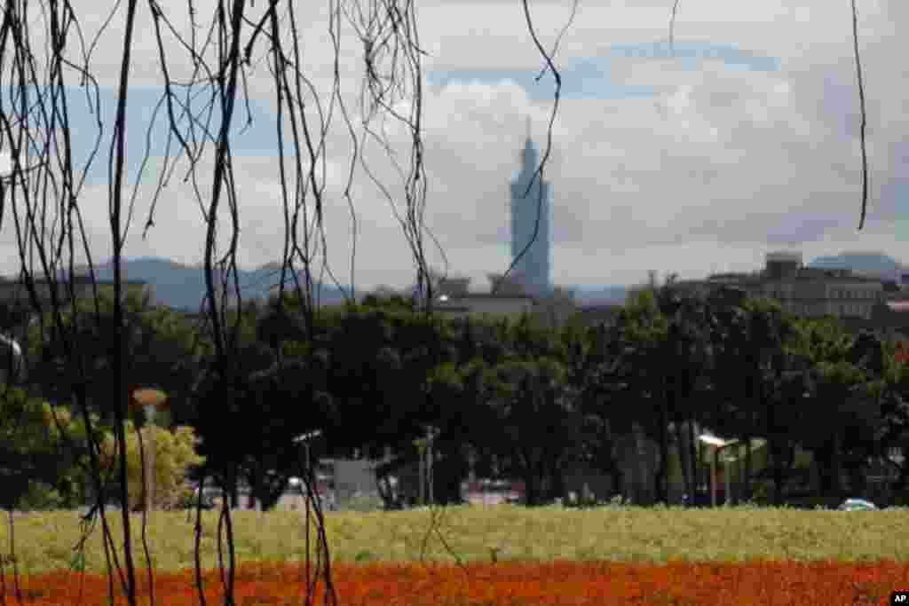 花博園區可遠眺台北市地標101大樓