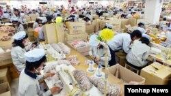 개성공단 재가동 이틀째인 지난 17일 SK어패럴에서 근로자들이 제품을 생산하고 있다.