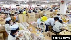 개성공단 재가동 이틀째인 지난달 17일 공단 내 SK어패럴에서 근로자들이 제품을 생산하고 있다.