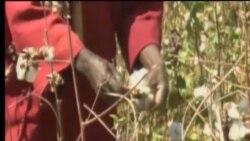 kori sene geleyaw Burkina faso la