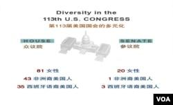 第113届美国国会的多元化