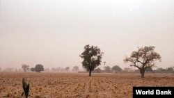 Un paysage du désert au Mali