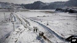 지난달 3일 북한 평안북도 구장군에서 농부들이 눈덮인 밭길을 걷고 있다. (자료사진)