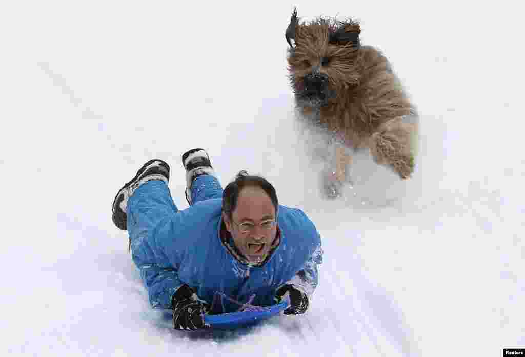 A man rides down a hill on a toboggan, chased by his dog in Central Park in New York. A blizzard pummeled the Northeastern United States, killing at least one person, leaving hundreds of thousands without power and disrupting thousands of flights, media and officials said.