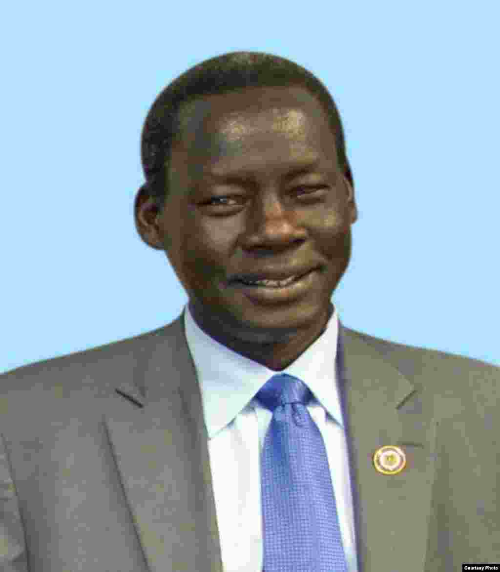 Former South Sudanese Minister of Cabinet Affairs Deng Alor Kuol, one of seven political detainees released Jan. 29, 2014 by the South Sudanese government.