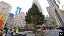 Jelka ispred Rockefeller centra u New Yorku