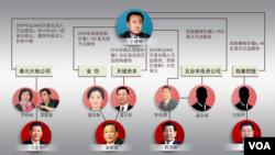 王健林和其股東關係圖