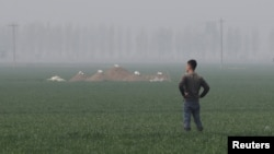 A man stands next to tombs in the field on the outskirts of Rongcheng county, one part of the new special economic zone Xiongan New Area, China, April 6, 2017. (REUTERS/Jason Lee)