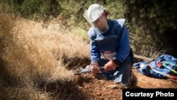 Manual landmine clearance underway in the West Bank, HALO Trust.