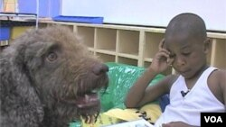 Dogs Helping Children Learn to Read