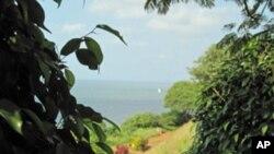 Baía de Maputo