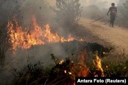 Lính cứu hỏa Indonesia cố gắng dập tắt đám cháy than bùn trên đảo Sumatra, ngày 30/9/2015.