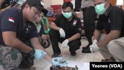 Polisi memperlihatkan material bom berupa potongan paku dan besi dari 9 bom rakitan yang diamankan dari base camp teroris di hutan gunung Tineba, Gunung Tineba, Desa Taunca, Kecamatan Poso Pesisir Selatant, 15 Januari 2016 (Foto: VOA/Yoanes).