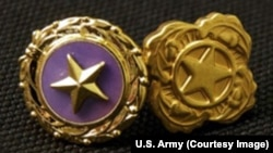 Gold Star lapel button