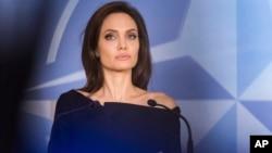 Aktris dan aktivis Angelina Jolie