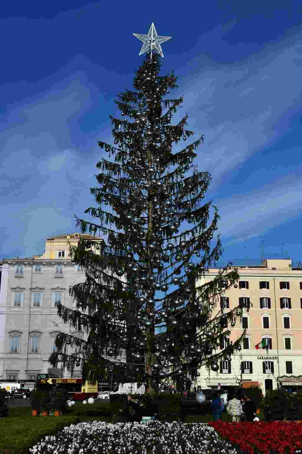 نمایی از درخت کریسمس تزئین شده در رم