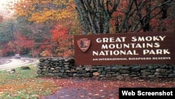 Great Smoky Mountains Milli Parkı