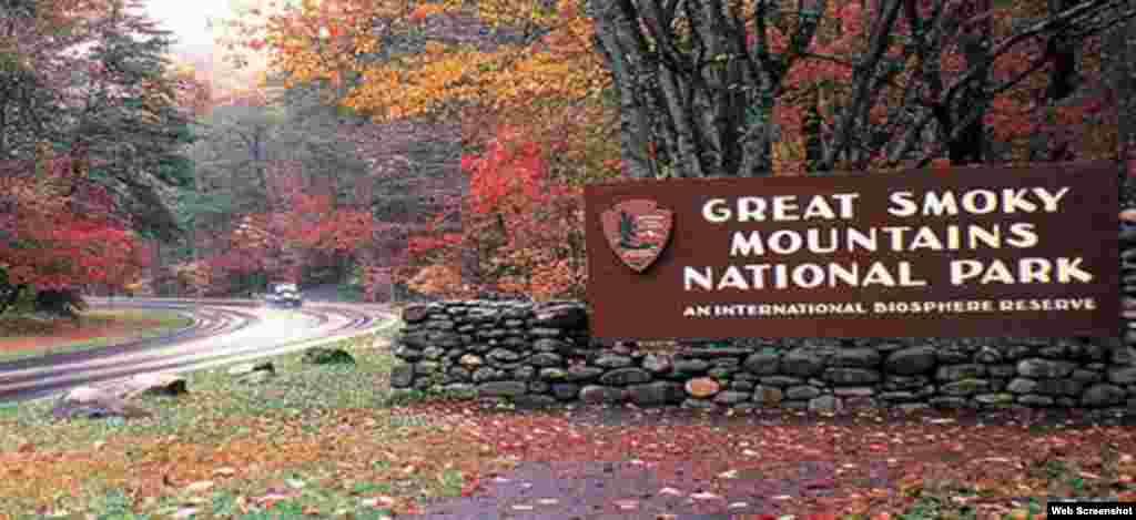 Great Smoky Mountains Milli Parkı