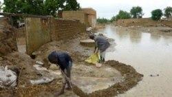 سازمان بهداشت جهانی: بیماری های مناطق استوایی، درسکوت قربانی می گیرند