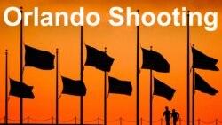 Amerikadagi o'zbeklar Orlandodagi voqeaga nima deydi?
