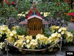 The US Botanic Garden's replicas of the US Supreme Court (front) and the US Capitol. Both representations are made from natural materials such as pine cones, willow and grapevines. (J. Taboh/VOA)