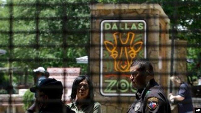 Petugas keamanan tengah berbincang dengan petugas kebun binatang Dallas, Texas (Foto: dok). Satuan pemadam kebakaran Dallas berhasil menyelamatkan 100 penumpang monorel di kebun binatang ini, saat berhenti mendadak, Sabtu (23/2).