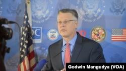 Acting Deputy Assistant Secretary Bureau of African Affairs, Matthew T. Harrington