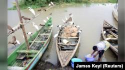 Nelayan-nelayan Kenya harus bersaing dengan kapal-kapal penangkap ikan asing, terutama dari China dan Italia (foto: dok).