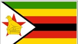 Taurai Shava Reports on Zimbabweans' Reflections of Independence Day