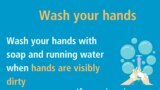 Clean your hands often and carefully with an alcohol-based hand cleaner or wash them with soap and water. Washing your hands kills viruses that may be on your hands.