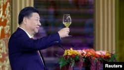 China's President Xi Jinping delivers a toast at a state dinner at the Great Hall of the People in Beijing, Nov. 9, 2017.