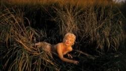 نمایش زندگی «مرلین مونرو» از طریق عکس ها