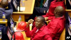 Julius Malema, Umunywanyi w'umugambwe, Economic Freedom Fighters