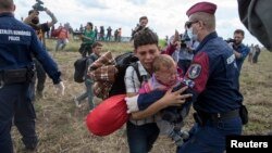 A migrant carrying a baby is stopped by Hungarian police officers as he tries to escape on a field nearby a collection point in the village of Roszke, Hungary, Sept. 8, 2015.
