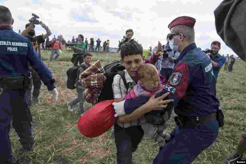 A migrant carrying a baby is stopped by Hungarian police officers as he tries to escape on a field nearby a collection point in the village of Roszke.