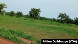 Burkina Faso: Kenedougou kènèkèlaw ban na kôri la