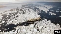 Durante 2010, uno de los botes de Sea Shepherd se hundió después de chocar con un navío japonés.