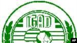 Interview with IGADD Secretary General on Somalia Security