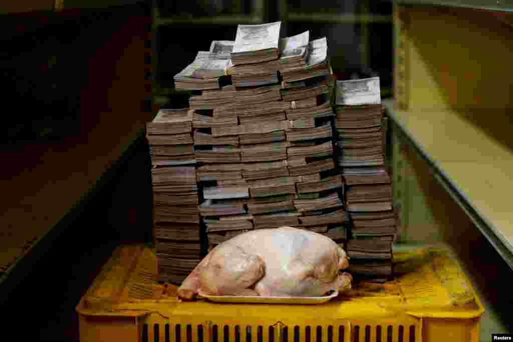 A 2.4 kg chicken is pictured next to 14,600,000 bolivars, its price and the equivalent of $2.22, at a mini-market in Caracas, Venezuela August 16, 2018.