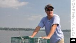 Citizen Volunteers Help Restore Chesapeake Bay Oysters