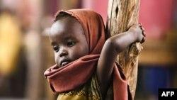 Afrika Birliyi Afrika Buynuzunda aclıqdan əzab çəkən 12 milyon insana yardıma çağırır