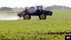 艾奧瓦州農民在大豆地裡噴灑除草劑。 (資料照片)